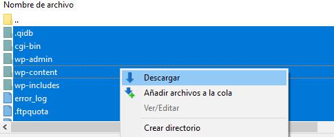 copia de archivos de servidor hosting a local con filezilla