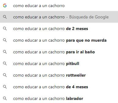 como encontrar micronichos con google